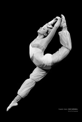 dansa professional