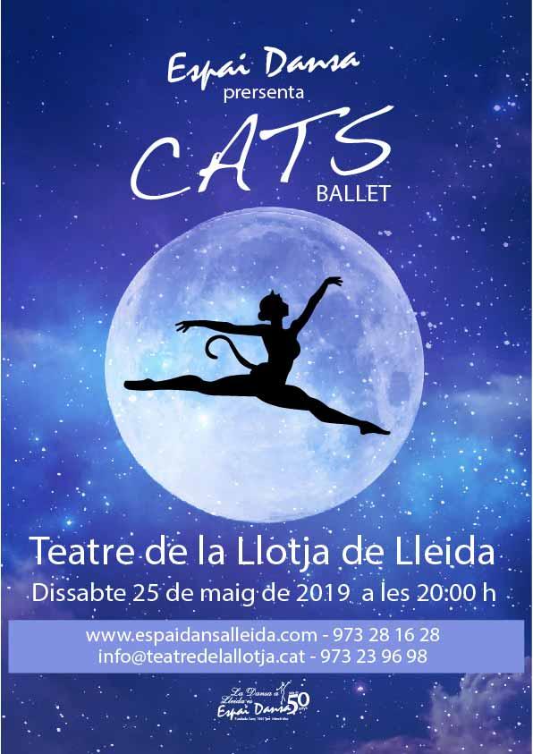 cartell festival Cats Lleida